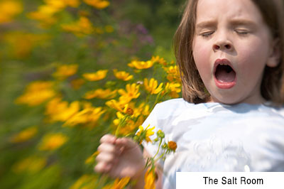 Allergies | Salt Room Winter Haven